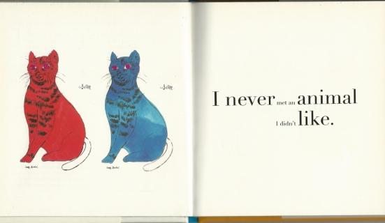 catscatscats-1
